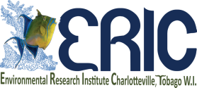 Environmental Research Institute Charlotteville, Tobago, Trinidad & Tobago, West Indies